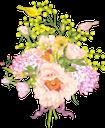 цветы, букет цветов, мимоза, птицы, сирень, флора, flowers, a bouquet of flowers, birds, lilac, blumen, ein blumenstrauß, mimosen, vögel, flieder, fleurs, un bouquet de fleurs, oiseaux, flore, un ramo de flores, mimosas, pájaros, lilas, fiori, un mazzo di fiori, uccelli, lillà, flores, um buquê de flores, mimosa, pássaros, lilás, flora, квіти, букет квітів, мімоза, птиці, бузок