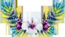 цветы, белый цветок, флора, flowers, white flower, blumen, weiße blume, fleurs, fleurs blanches, flore, flor blanca, fiori, fiore bianco, flores, flor branca, flora, квіти, біла квітка