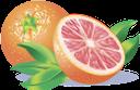 грейпфрут, цитрус, фрукты, цитрусы, оранжевый, fruit, citrus, grapefruit, obst, zitrus, pamplemousse, fruits, agrumes, orange, pomelo, fruta, cítricos, naranja, pompelmo, frutta, agrumi, arancia, toranja, frutas, citrinos, laranja, фрукти, цитрусові, помаранчевий