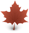 лист клена, клен, желтый лист, осень, осенняя листва, maple leaf, yellow leaf, autumn, maple, autumn foliage, fall leaves, gelbes blatt herbst, ahorn, herbstlaub, entblätterung, érable, chute des feuilles jaune, l'érable, le canada, feuillage d'automne, défoliation, gulur blaða haust, hlynur, kanada, haust sm, defoliation, caída de la hoja de color amarillo, arce, follaje de otoño, defoliación, foglia gialla caduta, acero, canada, fogliame autunnale, defogliazione, de bordo, queda da folha amarela, bordo, canadá, folha do outono, desfolha, жовтий лист, осінь, канада, осіннє листя, листопад