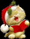 новый год, кот, шапка санта клауса, рождество, поющий пушистый котенок, neues jahr, katze, hut weihnachtsmann, weihnachten, singen flauschige kätzchen, nouvelle année, chat, chapeau père noël, noël, chant chaton pelucheux, nuevo año, sombrero de santa claus, navidad, cantando gatito mullido, nuovo anno, il gatto, il cappello di babbo natale, natale, canto gattino soffice, ano novo, gato, chapéu de papai noel, natal, gatinho fofo cantando