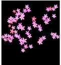 цветущее дерево, зеленое растение, дерево, флора, весна, цветы, blooming tree, green plant, tree, flowers, spring, blühender baum, grüne pflanze, baum, blumen, frühling, arbre en fleurs, plante verte, flore, arbre, fleurs, printemps, árbol de flores, las plantas verdes, árboles, albero in fiore, pianta verde, albero, fiori, árvore de florescência, planta verde, flora, árvore, flores, primavera, квітуче дерево, зелена рослина, квіти