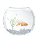 aqua, водоросль, water plant, seaweed, alga, seaware, fish, рыбы, аквариумная рыбка
