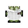 ny times, read, newspaper, газета, читать