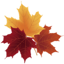желтый лист, осенняя листва, осень, кленовый лист, красный лист, yellow leaf, autumn foliage, autumn, maple leaf, red leaf, gelbes blatt, herbstlaub, herbst, ahornblatt, lollo, feuille jaune, feuillage d'automne, automne, feuille d'érable, feuille rouge, hoja amarilla, follaje de otoño, otoño, hoja de arce, hoja roja, foglia gialla, fogliame autunnale, autunno, foglia d'acero, foglia rossa, folha amarela, folhagem de outono, outono, folha de bordo, folha vermelha, жовтий лист, осіннє листя, осінь, кленовий лист, червоний лист