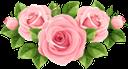 цветы, букет цветов, роза, флора, flowers, bouquet of flowers, blumen, blumenstrauß, fleurs, bouquet de fleurs, rose, flore, ramo de flores, fiori, bouquet di fiori, flores, buquê de flores, rosa, flora, квіти, букет квітів, троянда