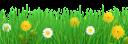 ромашка, ромашковое поле, трава, ромашка луговая, полевые цветы, одуванчик, желтый цветок, chamomile, chamomile field, grass, chamomile meadow, wildflowers, dandelion, yellow flower, kamille, kamille feld, gras, kamille wiese, wildblumen, löwenzahn, gelbe blume, camomille, champ de camomille, herbe, prairie de camomille, fleurs sauvages, pissenlit, fleur jaune, manzanilla, campo de la manzanilla, hierba, manzanilla pradera, diente de león, flor amarilla, camomilla, campo di camomilla, erba, prato di camomilla, fiori di campo, dente di leone, fiore giallo, camomila, campo de camomila, grama, prado de camomila, flores silvestres, dente de leão, flor amarela, ромашкове поле, ромашка лугова, польові квіти, кульбаба, жовта квітка