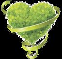 зеленый лист, лента, зеленое растение, сердце, любовь, green leaf, ribbon, green plant, heart, love, grüne bänder, bleche, natur, grüne pflanze, herz, liebe, feuille verte, bande, nature, plante verte, coeur, amour, de hoja verde, la naturaleza, las plantas verdes, corazón, foglio verde, striscia, natura, pianta verde, cuore, amore, folha verde, tira, natureza, planta verde, coração, amor, зелений лист, стрічка, природа, зелена рослина, серце, любов