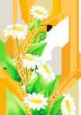 цветы, полевые цветы, белая ромашка, колоски пшеницы, flowers, wildflowers, white daisy, wheat spikes, blumen, wildblumen, weißes gänseblümchen, weizenspitzen, fleurs, fleurs sauvages, marguerite blanche, épis de blé, margarita blanca, fiori, fiori selvatici, margherita bianca, spighe di grano, flores, flores silvestres, margarida branca, espigas de trigo, квіти, польові квіти, біла ромашка, колоски пшениці