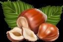 лесной орех, фундук, орехи, долька ореха, hazelnut, hazelnuts, nuts, walnut slice, haselnuss, haselnüsse, nüsse, ein stück walnuss, noisettes, noix, une tranche de noix, avellana, avellanas, nueces, una rebanada de nuez, nocciola, nocciole, noci, una fetta di noce, avelã, avelãs, nozes, uma fatia de noz, лісовий горіх, горіхи, часточка горіха