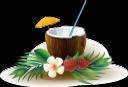 кокос, клубника, зеленый лист, coconut, strawberry, green leaf, kokosnuss, erdbeeren, grünes blatt, noix de coco, fraises, feuille verte, fresas, hojas verdes, noce di cocco, fragole, verde foglia, coco, morangos, folhas verdes, полуниця, зелений лист