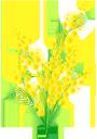 цветы, ветка мимозы, мимоза, желтый цветок, флора, flowers, a branch of a mimosa, a mimosa, a yellow flower, a flora, blumen, ein zweig einer mimose, eine mimose, eine gelbe blume, eine flora, fleurs, une branche d'un mimosa, un mimosa, une fleur jaune, une flore, una rama de una mimosa, una flor amarilla, fiori, un ramo di una mimosa, una mimosa, un fiore giallo, una flora, flores, um ramo de uma mimosa, uma mimosa, uma flor amarela, uma flora, квіти, гілка мімози, мімоза, жовта квітка