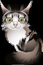 милый котик, животные, кошка, маленький кот, cute cat, animals, cat, little cat, niedliche katze, tier, katze, kleine katze, chat mignon, chat, petit chat, pequeño gato lindo, simpatico gatto, animale, gatto, piccolo gatto, gato bonito, animal, gato, gato pequeno, милий котик, тварини, кішка, маленький кіт