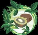 киви, зеленый лист, фрукты, тропический плод, зеленый, green leaf, tropical fruit, green, grünes blatt, frucht, tropische frucht, grün, feuille verte, fruit, fruit tropical, vert, hoja verde, foglia verde, frutta, frutta tropicale, kiwi, folha verde, fruta, fruta tropical, verde, ківі, зелений лист, фрукти, тропічний плід, зелений