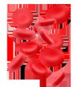 кровь, эритроциты, красный, кардиология, состав крови, красные кровяные тельца, медицина, blood, red, cardiology, blood composition, red blood cells, medicine, blut, rote, kardiologie, blutzusammensetzung, rote blutkörperchen, medizin, sang, rouge, cardiologie, composition sanguine, globules rouges, médecine, sangre, rojo, cardiología, composición sanguínea, glóbulos rojos, rosso, composizione del sangue, globuli rossi, sangue, vermelho, cardiologia, composição do sangue, glóbulos vermelhos, medicina, кров, еритроцити, червоний, кардіологія, склад крові, червоні кров'яні тільця