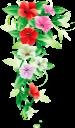 цветы, цветочная рамка, цветочная композиция, flowers, flower frame, flower arrangement, blumen, blumenrahmen, blumenarrangement, fleurs, cadre de fleur, arrangement de fleurs, marco de flores, arreglo floral, fiori, cornice floreale, composizione floreale, flores, quadro de flores, arranjo de flores, квіти, квіткова рамка, квіткова композиція