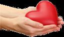 рука, кисть руки, жест, пальцы, часть тела, ладонь, открытая ладонь, пальцы руки, указательный палец, ладони вместе, сердце, день святого валентина, валентинка, любовь