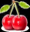 вишня, ягода вишни, ягоды, красный, спелая вишня, вишенка, cherry blossom, berries, red, ripe cherry, cherry, kirschblüte, beeren, rot, reife kirsche, kirsche, fleur de cerisier, baies, rouge, cerise mûre, cerise, flor de cerezo, bayas, rojo, cereza madura, cereza, fiore di ciliegio, bacche, rosso, ciliegia matura, ciliegia, cerejeira, bagas, vermelho, cereja madura, cereja, ягода вишні, ягоди, червоний, стигла вишня