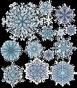 новый год, снежинка, new year, snowflake, neues jahr, schneeflocke, nouvelle année, flocon de neige, año nuevo, copo de nieve, nuovo anno, fiocco di neve, ano novo, floco de neve