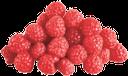 ягоды малины, красная ягода, свежая малина, berries of raspberry, red berry, fresh raspberry, rote beere, himbeere, fruits rouges, framboise, baya roja, frambuesa, bacca rossa, lampone, baga vermelha, framboesa