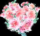 розовый цветок, растение, цветы, розовый, флора, pink flower, plant, flowers, pink, rosa blume, pflanze, blumen, fleur rose, plante, fleurs, rose, flore, fiore rosa, pianta, fiori, flor rosa, planta, flores, rosa, flora, рожева квітка, рослина, квіти, рожевий