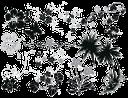 пальма, тропическое дерево, бабочка, цветы, palm tree, tropical tree, butterfly, flowers, palme, tropischer baum, schmetterling, blume, palmier, arbre tropical, papillon, fleur, palmera, árbol tropical, mariposa, palma, albero tropicale, farfalla, fiore, palmeira, árvore tropical, borboleta, flor, тропічне дерево, метелик, квіти