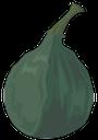 инжир, тропический плод, зеленый, фрукты, figs, tropical fruit, green, feigen, tropische früchte, grün, frucht, figues, fruits tropicaux, vert, fruit, higos, frutas tropicales, fichi, frutta tropicale, frutta, figos, frutas tropicais, verde, fruta, інжир, тропічний плід, зелений, фрукти