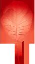 желтый лист, осенние листья, осень, осенний лист, листок дерева, листопад, yellow leaf, autumn, autumn leaves, a leaf of a tree, falling leaves, gelbes blatt, herbst, herbstlaub, ein blatt eines baums, fallende blätter, feuille jaune, automne, feuilles d'automne, une feuille d'un arbre, feuilles qui tombent, hoja amarilla, otoño, hojas de otoño, una hoja de un árbol, hojas caídas, foglia gialla, autunno, foglie di autunno, una foglia di un albero, foglie che cadono, folha amarela, outono, folhas de outono, uma folha de uma árvore, folhas caindo, жовтий лист, осіннє листя, осінь, осінній лист, листя дерева