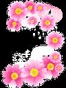 цветок, зеленое растение, распустившийся цветок, розовый, flower, green plant, a full-blown flower, pink, blume, grüne pflanze, eine ausgewachsene blume, fleur, plante verte, une fleur épanouie, rose, una flor en toda regla, de color rosa, fiore, pianta verde, un fiore in piena regola, flor, planta verde, uma flor full-blown, rosa