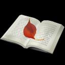 книга, book, buch, livre, libro, livro, 书