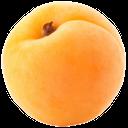 плод дерева абрикос, абрикос, плоды дерева абрикос, абрикос обыкновенный, желтый, apricot, fruit tree apricot, apricot ordinary, yellow, aprikosen obstbaum, aprikose, gelb, abricotier, abricot fruit, abricot, jaune, albaricoquero fruta, albaricoque, amarillo, albero albicocca, albicocca, giallo, damasco árvore de fruta, damasco, amarelo