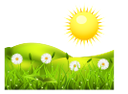 экология, пейзаж, зеленая трава, цветы, белые ромашки, солнце, ecology, landscape, green grass, flowers, white daisies, sun, ökologie, landschaft, grüne gras, blumen, weiße gänseblümchen, sonne, ecologia, paisagem, grama, margaridas brancas, ecología, paisaje, verde hierba, flores, margaritas blancas, sol, écologie, paysage, herbe verte, des fleurs, des marguerites blanches, le soleil