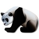 panda, 128