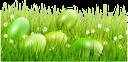 пасха, зеленая трава, пасхальное яйцо, green grass, easter egg, ostern, grünes gras, osterei, pâques, herbe verte, oeuf de pâques, pascua, la hierba verde, huevo de pascua, pasqua, erba verde, uovo di pasqua, easter, grama verde, ovo de páscoa