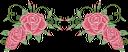 розовые розы, цветы, pink roses, flowers, rosa rosen, blumen, roses roses, des fleurs, de la flore, rosas rosadas, rose rosa, fiori, rosas cor de rosa, flores, flora, рожеві троянди, квіти, флора