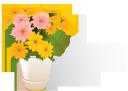 цветы, букет цветов, ведро с цветами, желтая хризантема, желтые цветы, флора, flowers, bouquet of flowers, a bucket of flowers, yellow chrysanthemum, yellow flowers, blumen, blumenstrauß, ein eimer mit blumen, gelbe chrysantheme, gelbe blumen, fleurs, bouquet de fleurs, un seau de fleurs, chrysanthème jaune, fleurs jaunes, flore, ramo de flores, un cubo de flores, crisantemo amarillo, flores amarillas, fiori, bouquet di fiori, un secchio di fiori, crisantemo giallo, fiori gialli, flores, buquê de flores, balde de flores, crisântemo amarelo, flores amarelas, flora, квіти, букет квітів, відро з квітами, жовта хризантема, жовті квіти