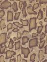 текстура кожа, кожа змеи, texture leather, snake skin, die textur der haut, schlangenhaut, la texture de la peau, la peau de serpent, la textura de la piel, piel de serpiente, la texture della pelle, pelle di serpente, a textura da pele, pele de cobra, текстура шкіра, шкіра змії