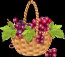 виноград, гроздь винограда, корзина с виноградом, ягода, плетеная корзина, grapes, bunch of grapes, berry, basket with grapes, wicker basket, trauben, traube, beere, traubenkorb, weidenkorb, raisins, raisin, baie, panier de raisin, panier en osier, baya, cesta de mimbre, frutti di bosco, cesto d'uva, cestino di vimini, uvas, uva, baga, cesta de uva, cesta de vime, гроно винограду, кошик з виноградом, плетений кошик