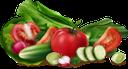 помидор, томаты, огурец, спелый помидор, листья салата, лук порей, красный редис, овощи, tomato, tomatoes, cucumber, ripe tomato, leek, lettuce, red radish, radish, vegetables, tomaten, gurken, reife tomaten, lauch, salat, roter rettich, rettich, gemüse, tomates, concombre, tomate mûre, poireau, laitue, radis rouge, radis, légumes, puerro, lechuga, rábano rojo, rábano, vegetales, pomodoro, pomodori, cetriolo, pomodoro maturo, porro, lattuga, ravanello rosso, ravanello, verdure, tomate, pepino, tomate maduro, alho-porro, alface, rabanete vermelho, rabanete, legumes, помідор, томати, огірок, стиглий помідор, листя салату, цибуля порей, салат, червоний редис, редиска, овочі