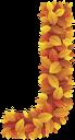 буквы из листьев, буква j, осенняя листва, желтые листья, английский алфавит, letters from leaves, letter j, autumn foliage, yellow leaves, english alphabet, briefe aus den blättern, dem buchstaben j, blätter im herbst, gelbe blätter, das englische alphabet, lettres des feuilles, la lettre j, feuilles d'automne, les feuilles jaunes, l'alphabet anglais, cartas de las hojas, la letra j, hojas de otoño, las hojas amarillas, el alfabeto inglés, lettere dalle foglie, lettera j, foglie di autunno, foglie gialle, l'alfabeto inglese, letras das folhas, a letra j, folhas de outono, as folhas amarelas, o alfabeto inglês, букви з листя, літера j, осіннє листя, жовте листя, англійський алфавіт