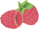 малина, красная ягода, ягода малины, красный, red berry, raspberry, red, rote beeren, himbeere, rot, baie rouge, framboise, rouge, baya roja, frambuesa, roja, bacca rossa, lampone, rosso, baga vermelha, framboesa, vermelha, червона ягода, ягода малини, червоний
