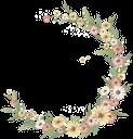ромашка полевая, рамка для фотошопа, полевые цветы, daisy field, frame for photoshop, field flowers, daisy bereich, rahmen photoshop, wild, champ marguerite, photoshop de trame, fleurs, campo de la margarita, photoshop marco, flores silvestres, margherita di campo, telaio photoshop, fiori, campo margarida, quadro photoshop, silvestres, ромашка польова, рамка для фотошопу, польові квіти