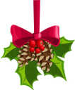 новый год, новогоднее украшение, праздничное украшение, праздник, еловая шишка, ветка дерева, красный бант, new year, christmas decoration, holiday decoration, holiday, fir cone, tree branch, red bow, neues jahr, weihnachtsdekoration, feiertagsdekoration, urlaub, tannenzapfen, baumast, roter bogen, nouvel an, décoration de noël, décoration de vacances, vacances, cône de sapin, branche d'arbre, arc rouge, año nuevo, decoración navideña, día festivo, cono de abeto, rama de árbol, lazo rojo, anno nuovo, decorazione natalizia, decorazione di festa, vacanza, cono di abete, ramo di un albero, fiocco rosso, ano novo, decoração natal, decoração, feriado, fir, cone, filial árvore, laço vermelho, новий рік, новорічна прикраса, святкове прикрашання, свято, шишка, гілка дерева, червоний бант