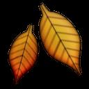 emoji natur-73