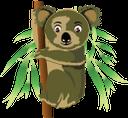 животные, коала, animals, koala, tiere, animaux, animales, animali, animais, тварини