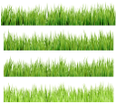 флора, зеленая трава, green grass, grünes gras, flore, herbe verte, la flora, la hierba verde, erba verde, flora, grama verde