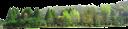 пейзаж, зеленые деревья, деревья, природа, лес, парк, landscape, green trees, trees, nature, forest, landschaft, grüne bäume, bäume, natur, wald, park, paysage, arbres verts, les arbres, la nature, la forêt, parc, paisaje, árboles verdes, árboles, naturaleza, bosque, paesaggio, alberi verdi, alberi, natura, foresta, parco, paisagem, árvores verdes, árvores, natureza, floresta, parque