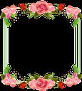 цветочная рамка, рамка для фотошопа, цветы, flower frame, frame for photoshop, flowers, blumenrahmen, rahmen für photoshop, blumen, cadre fleur, cadre pour photoshop, fleurs, marco de flores, marco para photoshop, cornice floreale, cornice per photoshop, fiori, quadro de flores, quadro para photoshop, flores, квіткова рамка, рамка для фотошопу, квіти, роза