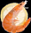 креветка, лимон, морепродукты, shrimp, lemon, seafood, garnelen, zitrone, meeresfrüchte, crevettes, citron, fruits de mer, camarones, limón, mariscos, gamberetti, limone, frutti di mare, camarão, limão, frutos do mar