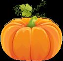 спелая тыква, бахчевые, тыква на хэллоуин, желтый, ripe pumpkin, pumpkin for halloween, yellow, reif kürbis, melonen, kürbisse für halloween, gelb, citrouille mûre, melons, citrouilles pour halloween, jaune, calabaza madura, melones, calabazas para halloween, amarillo, zucca maturo, meloni, zucche per halloween, giallo, abóbora madura, melões, abóboras para o halloween, amarelo